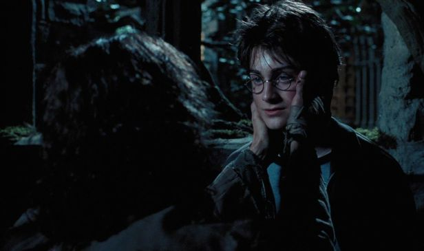 Harry_and_Sirius